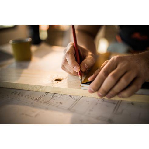 Carpenter snickarpenna